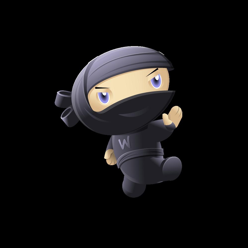 ninja-kick.png